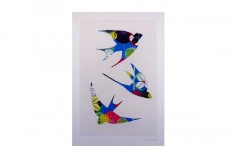 Swallow drawing print
