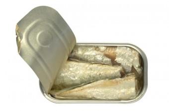 sardine azeite e limao
