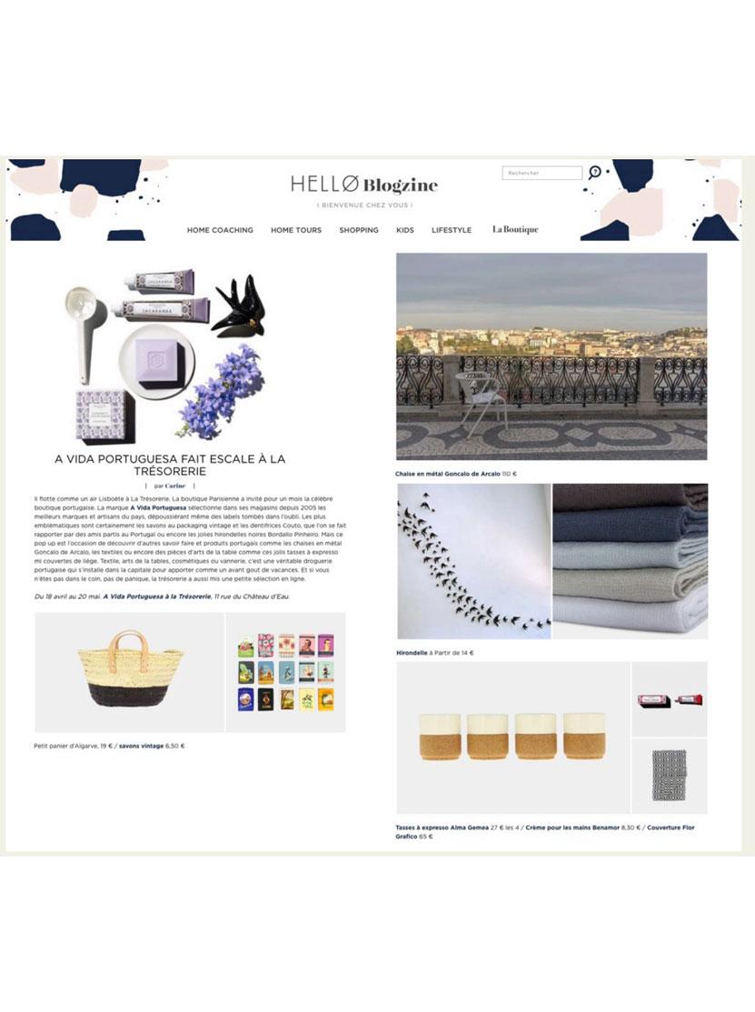 Hello Blogzine France